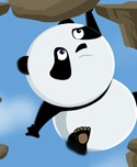 Rolling Panda (247 times)